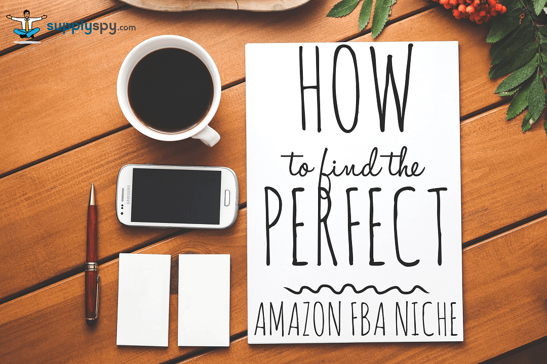 Case Study Update #1: Finding Amazon Niche